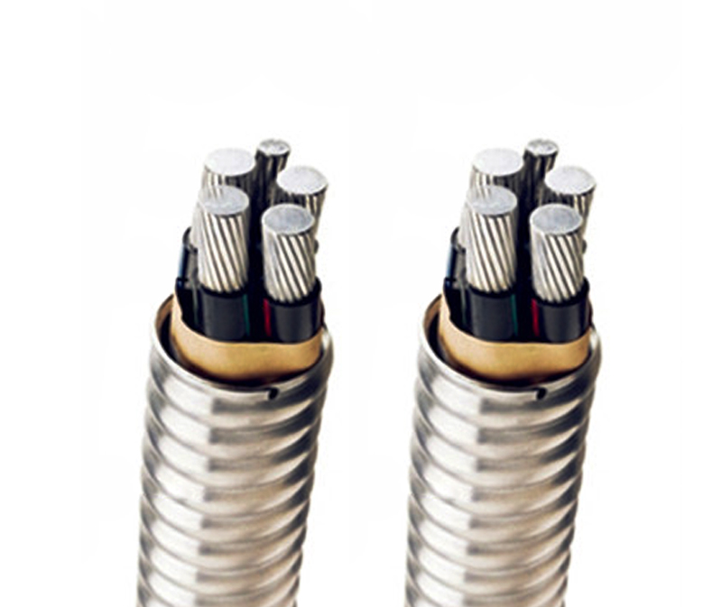 ZC-YJLV-22聚氯乙烯内护层钢带铠装阻燃中压电力电缆